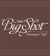 Big Shot Brochure
